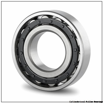 55 mm x 100 mm x 21 mm  FBJ NUP211 cylindrical roller bearings