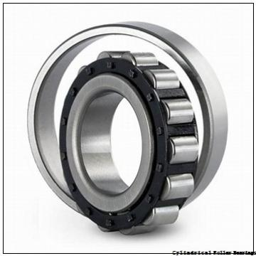 60 mm x 130 mm x 31 mm  ISO NJ312 cylindrical roller bearings