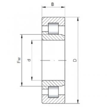 160 mm x 290 mm x 48 mm  ISO NJ232 cylindrical roller bearings