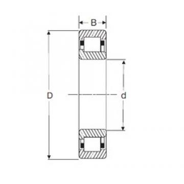 65 mm x 140 mm x 33 mm  SIGMA NJ 313 cylindrical roller bearings