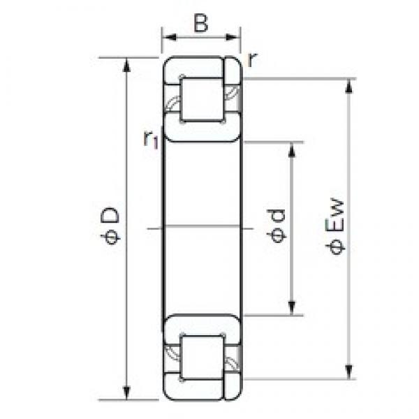 30 mm x 55 mm x 13 mm  NACHI NP 1006 cylindrical roller bearings #3 image