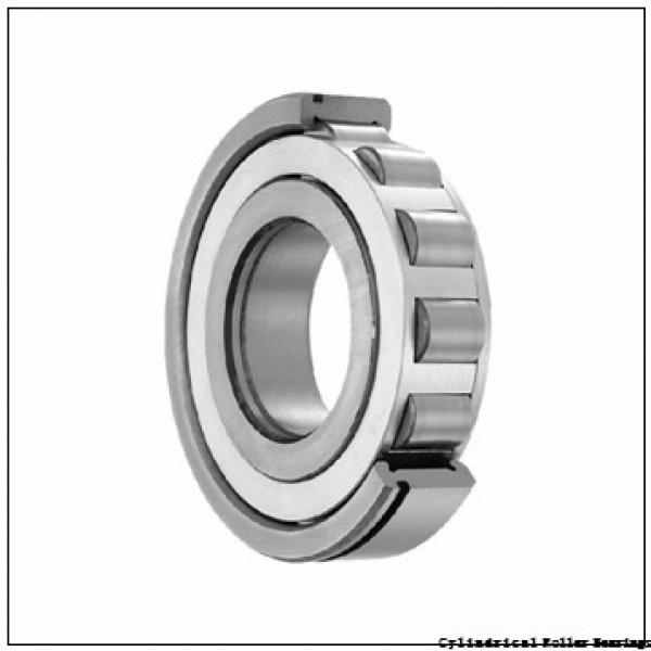 75 mm x 130 mm x 31 mm  CYSD NU2215E cylindrical roller bearings #2 image