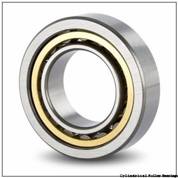 30 mm x 55 mm x 13 mm  NACHI NP 1006 cylindrical roller bearings #1 image